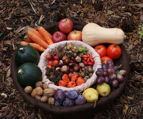 fruit vegetable bowl ground